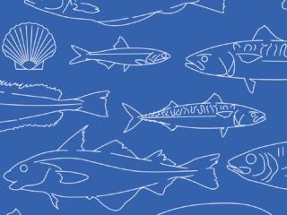 IFREMER - Comment vont les poissons ?